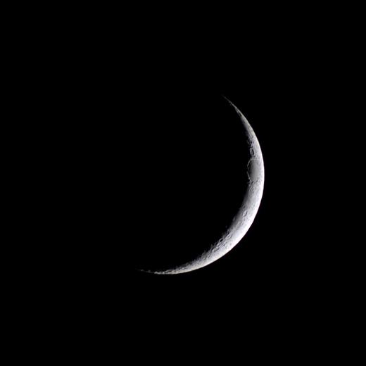 Moon8182c2k0310sqx