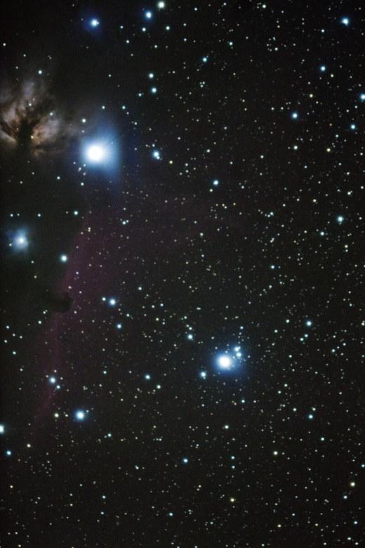 M42_0670paybux