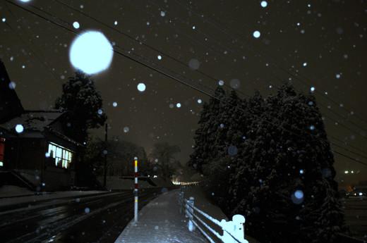 Snow_0348x_2