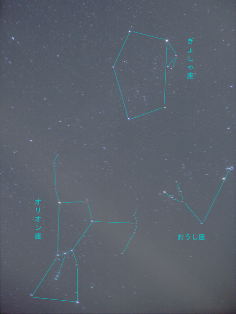 gyoc4n0218svt