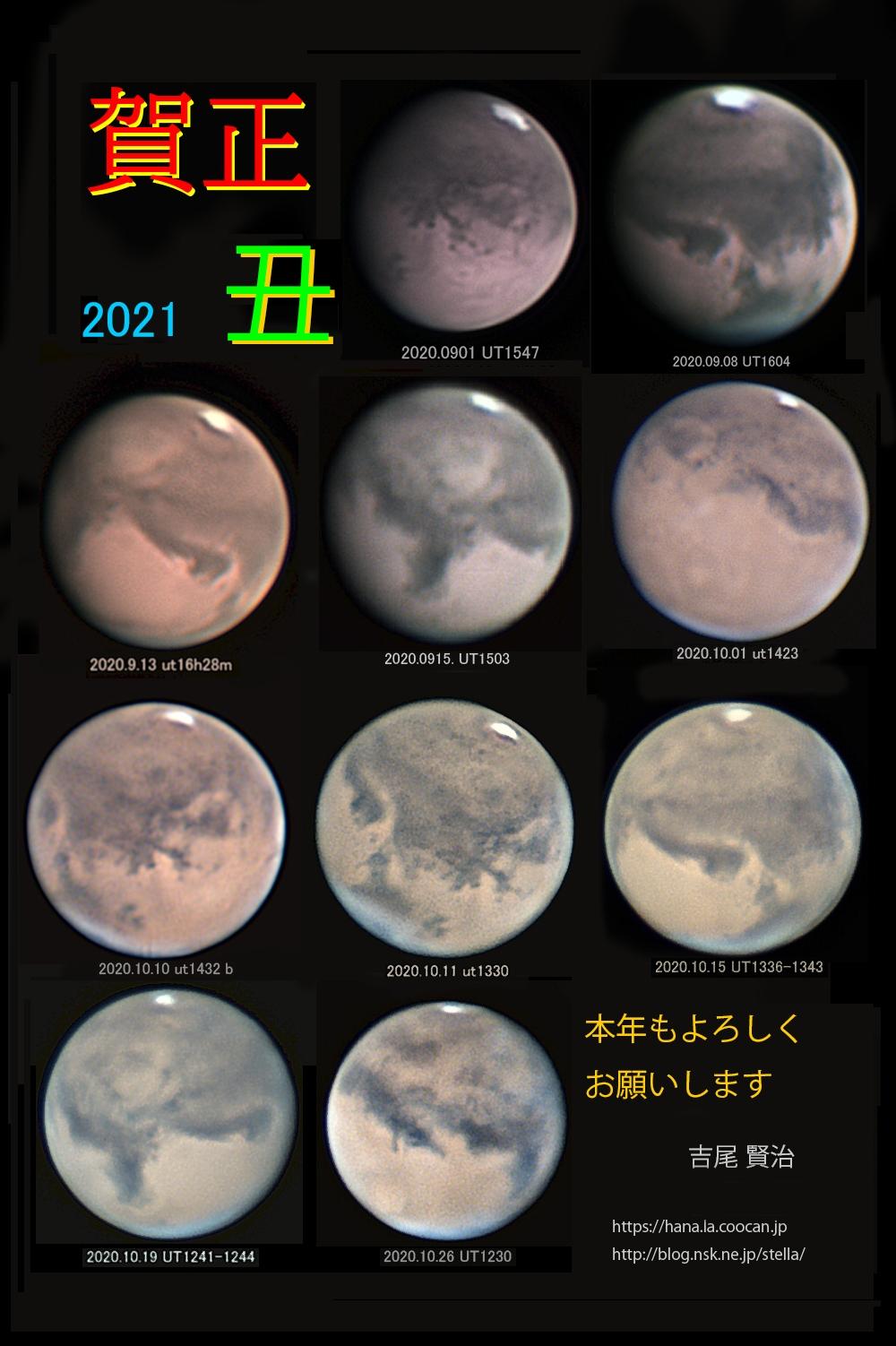 Nenga2021web